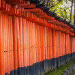 Torii gates in Fushimi Inari Shrine, Kyoto, Japan — Stock Photo #63329737