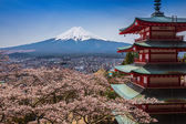 Red pagoda with Mt. Fuji as the background — Stock Photo