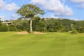 Beautiful View of Green Golf Field — Foto Stock