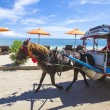 GILI ISLANDS, INDONESIA - MARCH 22: Gili islands are small tropical islands between Lombok and Bali islands. — Stock Photo #74174241