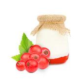 Currant yogurt — Стоковое фото