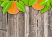 グレープ フルーツ — ストック写真