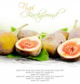 Fig frukt — Stockfoto