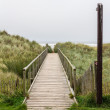 Wooden access pathway to the beach — Stock Photo #61303171