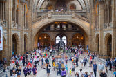 National History Museum,  is one of the most favourite museum for families in London. — Photo