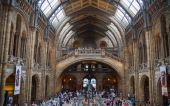 National History Museum,  is one of the most favourite museum for families in London. — Stock Photo