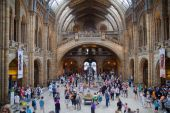 LONDON, UK - AUGUST 11, 2014: National History Museum, is one of the most favourite museum for families in London. — Stock Photo