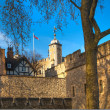 LONDON, UK - APRIL15, 2015: Tower of London (started 1078), old fortress, castle, prison and house of Crown Jewels. View form the river side park — Stock Photo #70734973