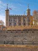 ロンドン、イギリス - 2015 April15: ロンドンのタワー (1078年開始)、古い要塞、城、刑務所および王冠の宝石のハウス。ビュー フォーム リバー ・ サイド ・ パーク — ストック写真