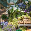 LONDON, UK - 22 JULY, 2014: Flower shop Covent Garden market, one of the main tourist attractions in London, known as restaurants, pubs, market stalls, shops and public entertaining. — Stock Photo #72266539