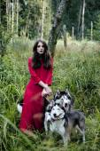 Woman in red dress with tree wolfs, forest tail — Stock Photo