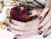 Close up picture of manicure nails with dry flower red rose, deh — Stock Photo