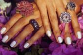 Bright colorfull shot of african tanned hands with manicure amon — Fotografia Stock