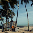 Little vietnamese house on seacoast among palms and sand — Stock Photo #73629045