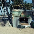 Little vietnamese house on seacoast among palms and sand — Stock Photo #77786188