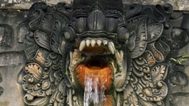 Water flowing from dragon sculpture — Vídeo de stock