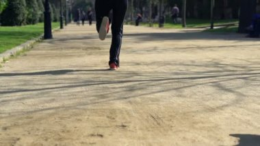 Joggers running in the park — Stock Video