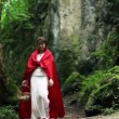 Mysterious red riding hood walking in forest — Stock Video #62032545