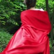 Woman in red cape run in forest — Stock Video #62033037