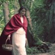 Mysterious red riding hood walking in forest — Stock Video #62033523