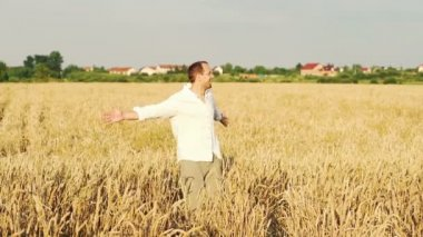Happy man turning round on wheat field — Stock Video