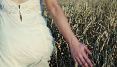 Woman running through wheat field — Stock Video