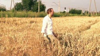Young farmer walking through wheat field — Stock Video