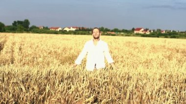 Young man walking through wheat field — Stock Video