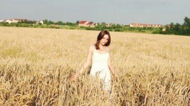 Woman walking through wheat field — Stock Video