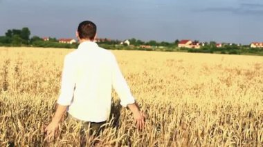 Young man walking through wheat field — Stock Video