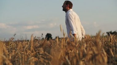 Happy man running in wheat field — Stock Video