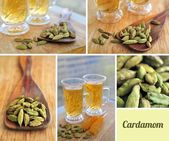 Green cardamom collage — Stock Photo