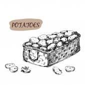 Potatoes in basket — Stock Vector