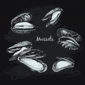Mussels set — Stock Vector