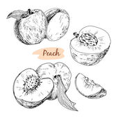 Set of peach — Stockvektor