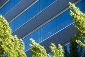 Office buildings in cityscape with a sky blue — Stock Photo