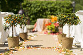 Flowers at an outdoor wedding venue — Stock Photo