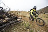 """Malaga, İspanya - 30 Mart: Bilinmeyen yarışçı dağ bisikleti """"Büyük yolculuk açık de İspanya de Enduro"""" 30 Mart 2014 tarihinde Malaga, İspanya rekabet — Stok fotoğraf"""