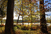 HDR capture of an autumnal landscape in Bavaria  — Stock Photo