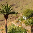 Masca village on the island of Tenerife — Stock Photo #56378629