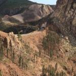Landscape of the island of La Gomera — Stock Photo #59013549