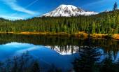 Reflection lake, Mt. Rainier. — Stock Photo