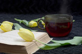 Background with tulips old book — Fotografia Stock