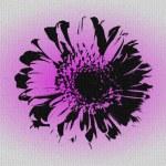 Mosaik from pink gerber — Stock Photo #61068361