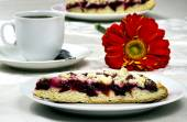 Cake with plums sprinkled with crumbs — Stock Photo