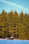 Mountain winter landscape  sunny day — Stock Photo
