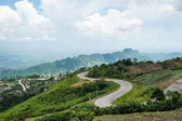 Mountain road in a morning mist, thailand — Stock Photo