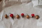 Rose hips  and  acorns — Foto de Stock