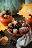 Colorful autumn leaves with pine cones, walnut and pumpkins — Foto de Stock