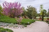 Hirschstetten Botanical Gardens, Vienna — Stock Photo